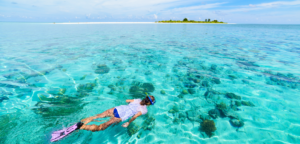 Snorkeling Caribbean